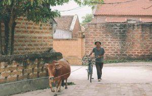 गाँव में पैसे कैसे कमायें